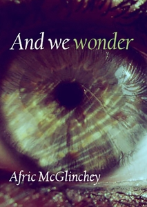 and we wonder cover image revised